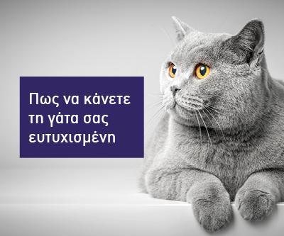 Ευτυχισμένη γάτα, ευτυχισμένοι κηδεμόνες